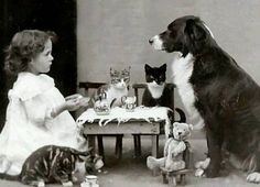 Such well behaved tea party guests! Such a sweet photo - makes us smile today. #photography #teaparty Found at Old Photographs facebook page.