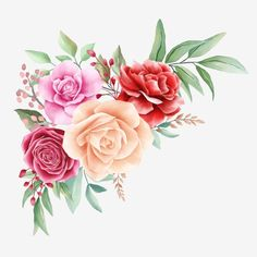 Floral illustration of red roses, peonies, leaf, bud, and branches. Wedding invitation or greeting cards border composition - Buy this stock illustration and explore similar illustrations at Adobe Stock Flower Circle, Flower Frame, Flower Art, Arte Floral, Elegant Flowers, Colorful Flowers, Flower Backgrounds, Colorful Backgrounds, Flores Vintage Png