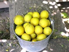A wonderfully cheap decor idea. Fill silver or steel buckets, antique silver cake stands, and even a kitchen colander with heaps of lemons. Vary the heights along your table to create an eye-catching display on a budget.  Bucket of  Lemons by gem66, via Flickr