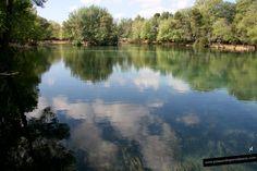 El lago de Anna está en 'La Canal de Navarrés' en Valencia. Es un lago de agua dulce rodeado de frondosos árboles y vegetación mediterránea. Bellísimo.