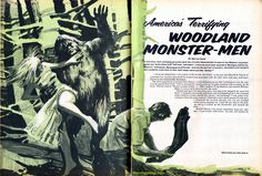 """""""America's Terrifying Woodland Monster-Men"""" from SAGA, July 1969. Art by John Asaro. This an example of the many classic men's pulp adventure magazine stories and illustrations about legendary monsters like Bigfoot and Sasquatch that are included in our book the CRYPTOZOOLOGY ANTHOLOGY (on Amazon here amzn.to/1IIa45W)."""