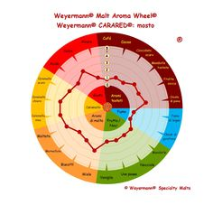 Weyermann® Malt Aroma Wheel® Carared® - mosto