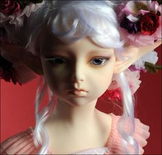 DOLLMORE BJD Lusion Doll - Somnambulinsomnia ; Elf Dahlia - LE30 (Fullset) | eBay