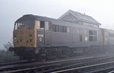 Class 'skinhead' 31019 (with at Manningtree, Essex on 16 October 1977 after bringing in a railtour. (Re-processed and upsized - March Electric Locomotive, Diesel Locomotive, British Rail, British Isles, Train Room, Travel Destinations, Trains, London, World