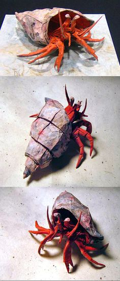 Hermit Crab Origami by Brian Chan