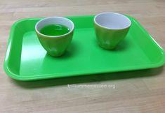 Pouring Green Water Trillium Montessori