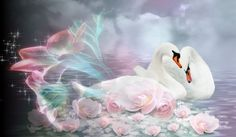 Fractalius Swan - flowers, blue, white, water, pink, blended, nature, reflection, swan, soft