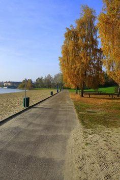 Strand Kleine Rietplas Emmen in de herfst.
