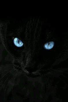 Wow eyes...