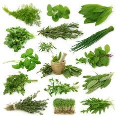 Top 10 Anti Inflammatory Herbs on Easy to Grow Herbs: Turmeric, Ginger, Boswellia, Rosemary, Garlic, Licorice, Cayenne, Cinnamon, Parsley, Basil (I didn't even know licorice and cinnamon were herbs!)