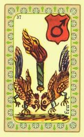tarot oracle amour belline