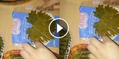 Poşet İle Yaprak Sarması