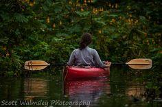 Kayak in the jungle