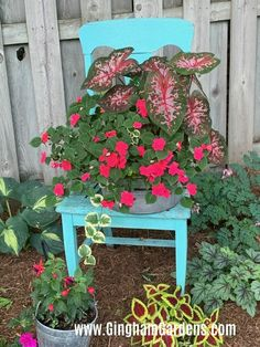 Buy Flowers Online Same Day Delivery Lots Of Ideas For Your Shade Garden, As Well As Lots Of Fun Ideas For Junk Gardens Using Recycled And Repurposed Vintage Items As Garden Decor. Garden Table, Garden Beds, Garden Art, Garden Design, Garden Chairs, Garden Junk, Easy Garden, Diy Garden Decor, Vintage Milk Can