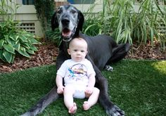 Dog and Baby Picture http://ift.tt/1STdh5C
