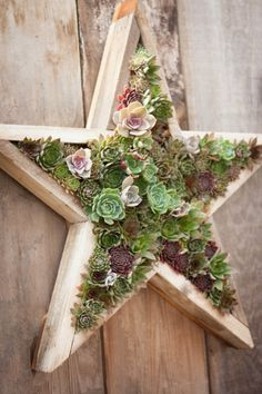Framed succulents are the ideal focal point for a barren patio or garden wall. I know there are many nurseries that sell similar arrangements to these, but they can be pricey. Have you ever thought about making one of your own? Here are a few guidelines for you, if you're feeling crafty enough to create your own succulent wall hanging.