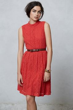 d3f9906ab22 NEW Anthropologie Angie Collared Dress by Hi There from Karen Walker Size 8