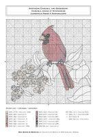 Gallery.ru / Фото #7 - Red Birds & Berries - Gala40