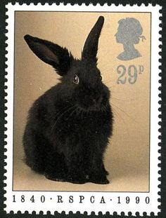 anniversary of the founding of the R. Reproduced from a stamp designed by Tony Evans and issued by the Royal Mail on 23 January PHQ Cards are postcards depicting the design of a commemorative stamp issued by the Royal Mail. Uk Stamps, Postage Stamp Collection, Year Of The Rabbit, Commemorative Stamps, Postage Stamp Art, Rabbit Art, Bunny Art, Vintage Stamps, Fauna