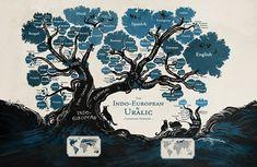 Филогенетическое дерево языков индоевропейской и уральской семей (автор: Minna…
