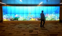 40 feet MotionMagix #Interactive Wall displaying several welcoming effects at the #Airport
