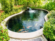 What is the Minimum Pond Size for Koi? Let's see how big you should build your garden pond to house koi. Waterfall Landscaping, Pond Waterfall, Landscaping Ideas, Backyard Ideas, Fish Pond Pumps, Above Ground Pond, Solar Pond, Garden Fountains, Small Pond Fountains