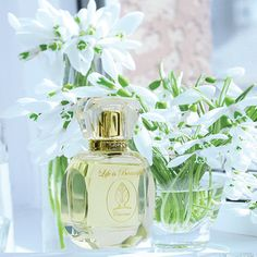 Perfume Citronné by Florencia; Grapefruit Notes; Citrusy Fruity Floral Fragrance…