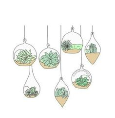 Image result for succulents doodle