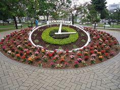 Mundo de Cissa: Relógio de flores    Garanhuns - Pernambuco