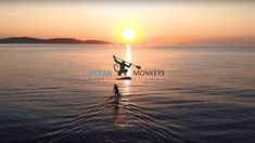 OCEAN MONKEYS - Official Promo 2020 - #paddleboards #sup Sup Paddle Board, South Devon, Turn Off, Paddle Boarding, Monkeys, Boards, Europe, Ocean, Sunset