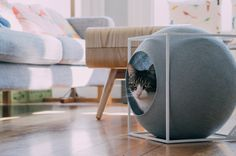 Classy furniture for discerning cats. Mobilier chic pour chats exigeants!