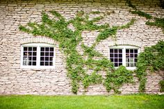 historic mayowood stone barn wedding in rochester minnesota | photo: angelicjewelphotography.com