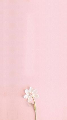 ideas flowers wallpaper backgrounds pink for 2019