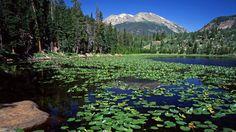 colorado rocky mountain pictures | travel travel cub lake stones mountain rocky mountain national park