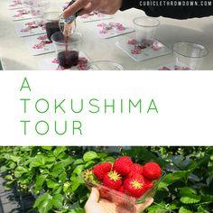 A Tokushima Tour #japan #expat #jetprogramme