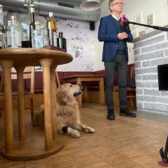 """Gefällt 649 Mal, 12 Kommentare - Rudi Anschober (@rudi_anschober) auf Instagram: """"Zustimmung! Herrli ruft zur Unterzeichnung des Tierschutzvolksbehrens auf."""" Instagram, Style, Fashion, Politics, Swag, Moda, Fashion Styles, Fashion Illustrations, Outfits"""
