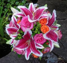 Wedding Bouquets Stargazer and Roses | bb0342 stargazer lily bridal bouquet stargazer lilies hot pink roses ...