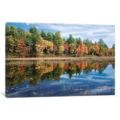 """Alcott Hill Autumn Reflection I Photographic Print on Wrapped Canvas Size: 8"""" H x 12"""" W x 0.75"""" D"""