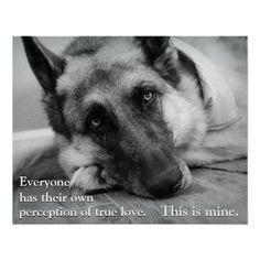 German Shepherd... I miss my Kira