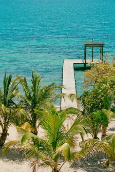 It's perfect. It's Itz'ana. Luxury resort & residences coming to Placencia in 2016. #xoBelize