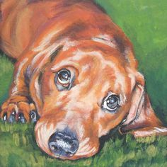 Red Doxie Canvas Print of LA Shepard by TheDogLover