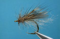 backstop_caddis