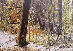 "Anne Jones: ""Woodlands"" reduction Lino"