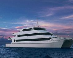 Join a Manta Trust expedition in the Maldives in style on Four Seasons Explorer Conservation, Narrowboat, Super Yachts, Motor Boats, Four Seasons, Canoe, Maldives, Wonders Of The World, Sailing