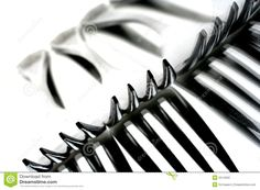 fork photography - Google Search