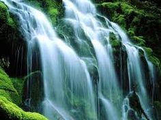 Resultado de imagen para imagenes increibles y hermosas de la naturaleza