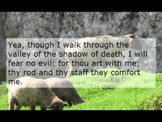 About bible stories on pinterest psalm 23 lego and attendance chart