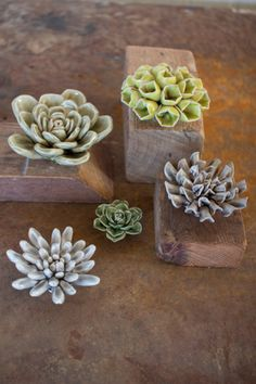 Set of 5 Greys & Greens Ceramic Succulents is part of Green Home Accessories Grey - Love the look of succulents, but don't want the upkeep These little guys look lovely and you don't even need water! Largest 4 5 d Ceramics Projects, Clay Projects, Clay Crafts, Ceramic Flowers, Clay Flowers, Ceramic Pottery, Ceramic Art, Hand Built Pottery, Rustic Gifts