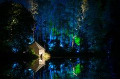 enchanted forest pitlochry scotland magic