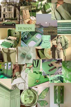 Sage Green x Collage
